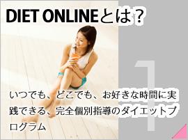 ページナビ:DIET-ONLINEとは?